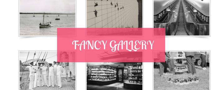 5 Best Photo Gallery Plugins For WordPress 2019