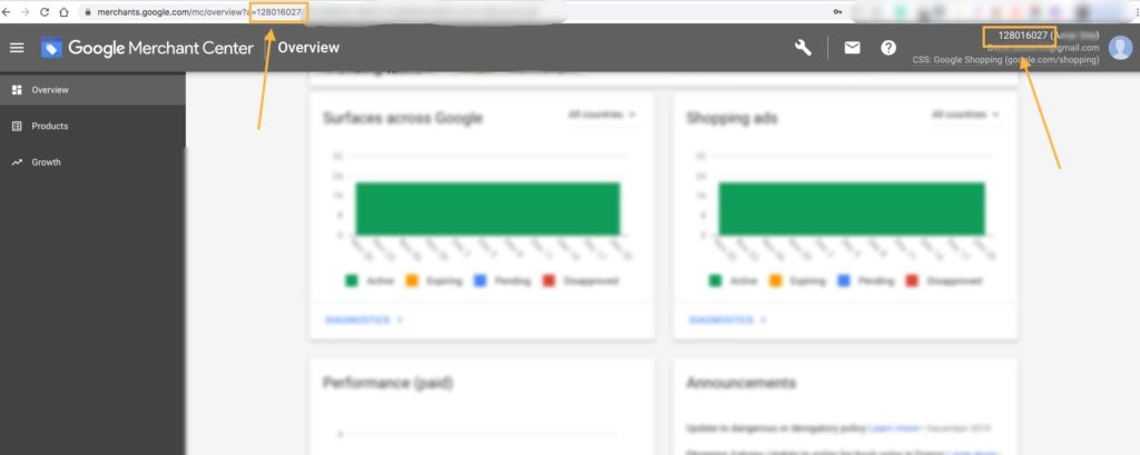 Google Merchant ID