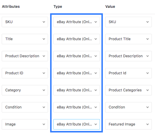 Attribute Type Setting For eBay