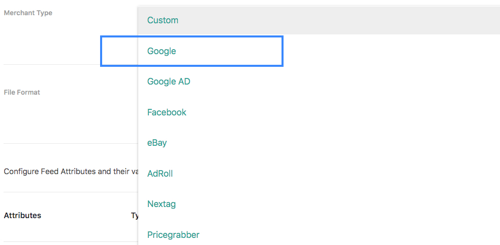 Google Merchant Type