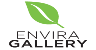 Envira Gallery Black friday Deals