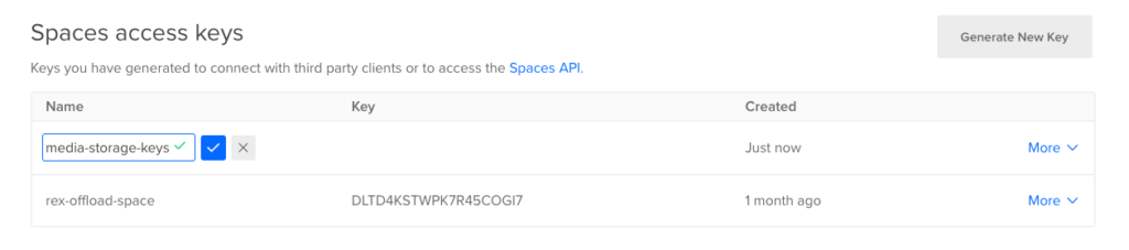 Name New Spaces Access Keys