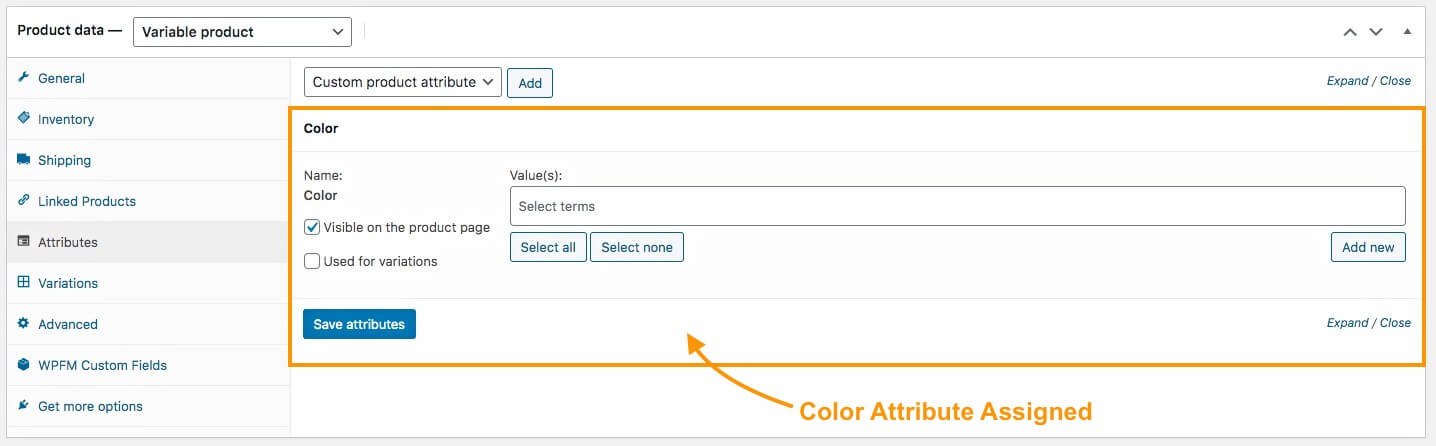 Editing An Existing Term of The Attribute
